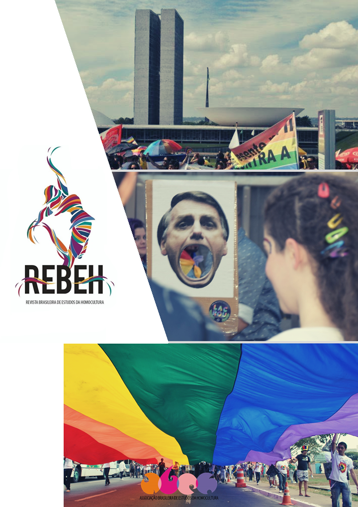 Visualizar v. 2 n. 04 (2019): REBEH V.2 N.04